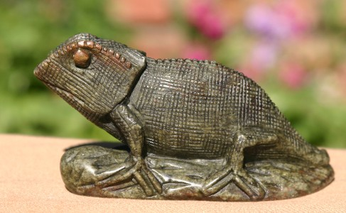 Cute Chameleon on a Log